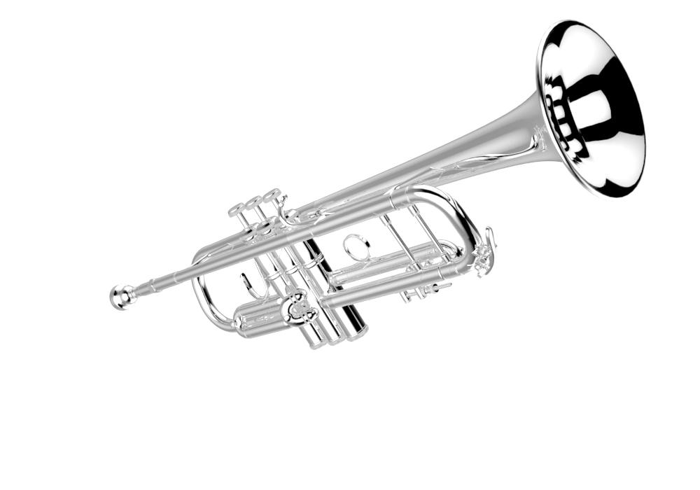 Trumpet Tour - Bach Brass